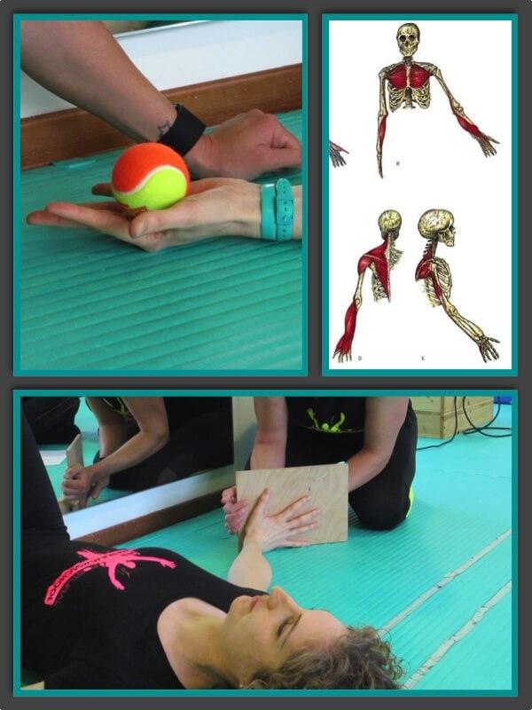 Esercizi posturali per mano e polso